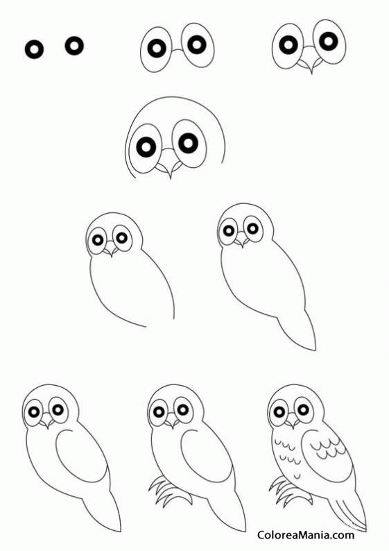 Colorear Una oliva (Cómo dibujar Aves), dibujo para colorear gratis