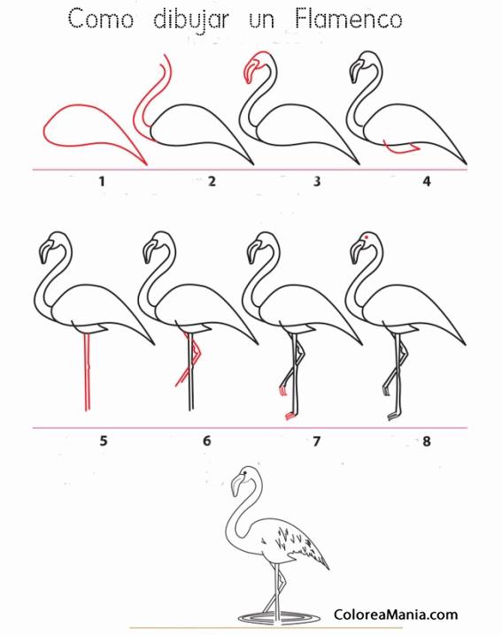 Dibujos De Mariposas Para Colorear E Imprimir