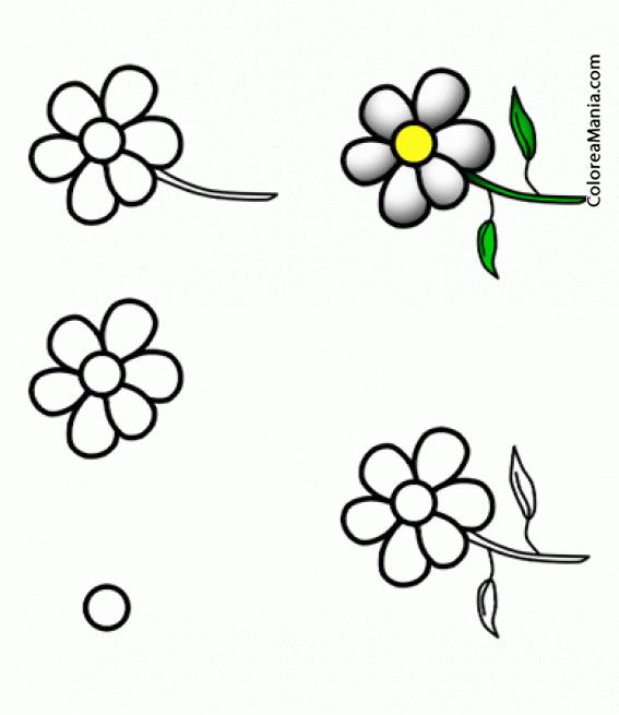 Colorear Una Flor Margarita Aprendiendo A Dibujar Dibujo
