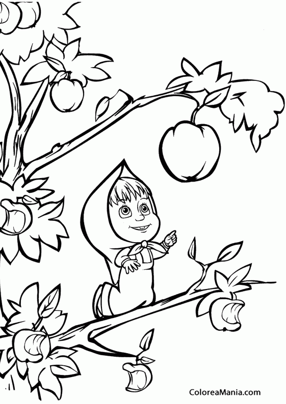 Colorear Masha Cogiendo Un Fruto Masha Y El Oso Dibujo Para