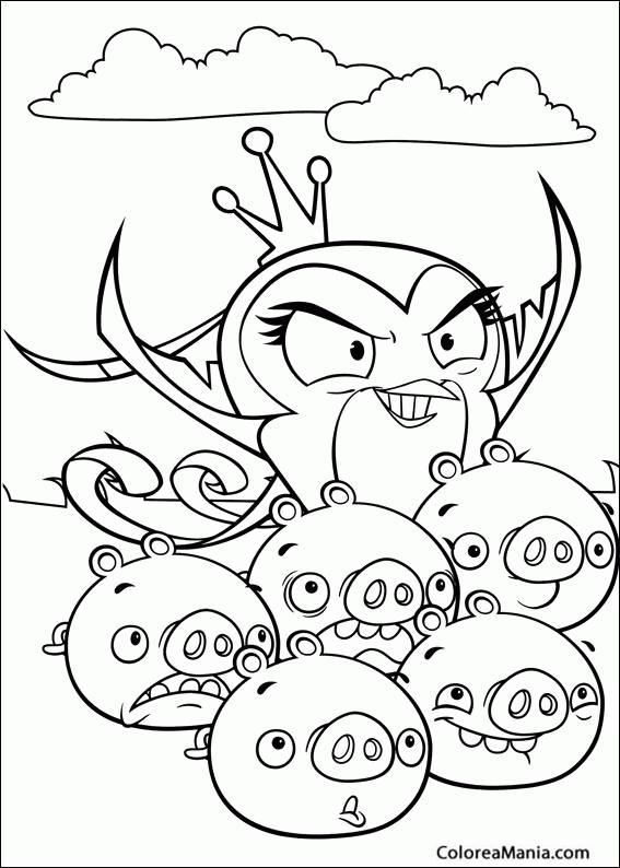 Colorear Angry Birds Gale Angry Birds Dibujo Para Colorear Gratis