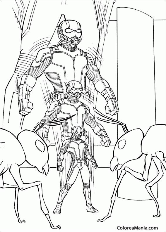Colorear El Hombre Hormiga 2 Ant Man Dibujo Para Colorear Gratis