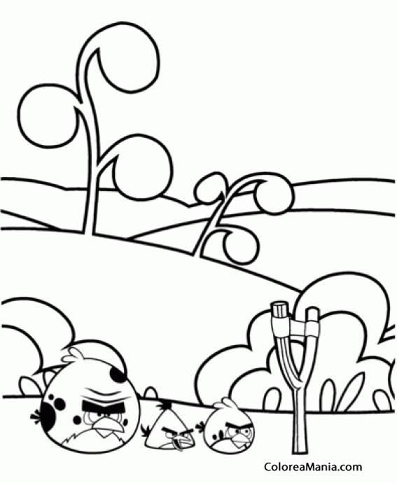 Colorear Terence Y Pájaro Amarillo Y Rojo Angry Birds