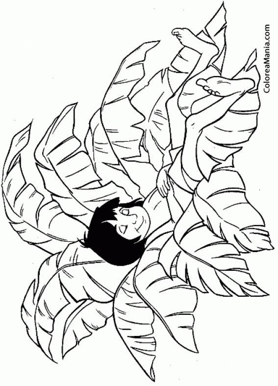 Colorear Mowgli duerme en entre las hojas (El libro de la selva ...