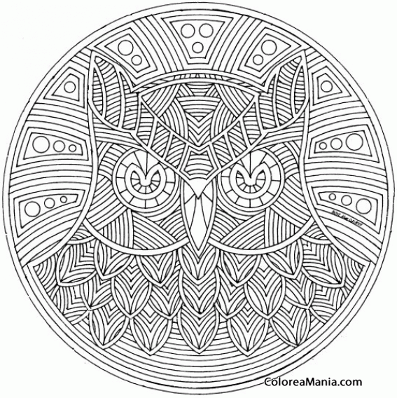 Colorear Mandala Búho Mandalas Dibujo Para Colorear Gratis