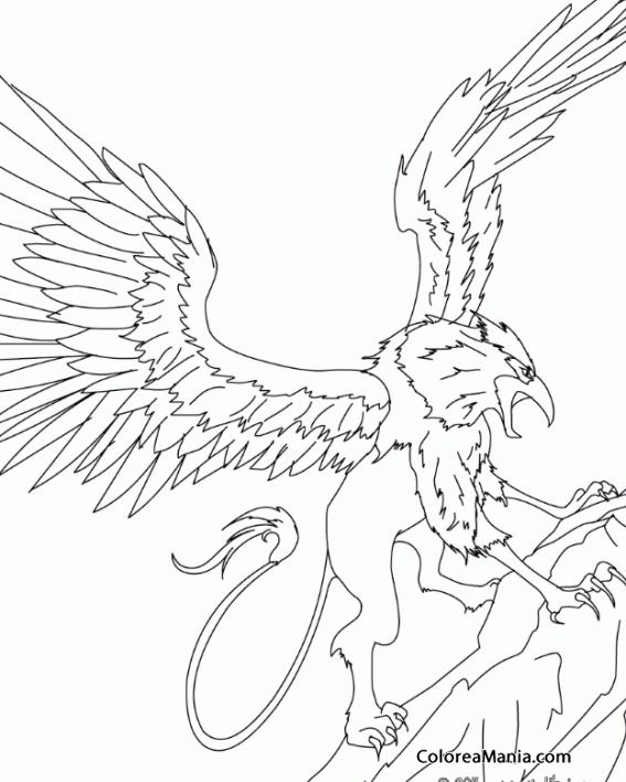 Colorear grifo al ataque animales fantsticos dibujo for Grifo dibujo