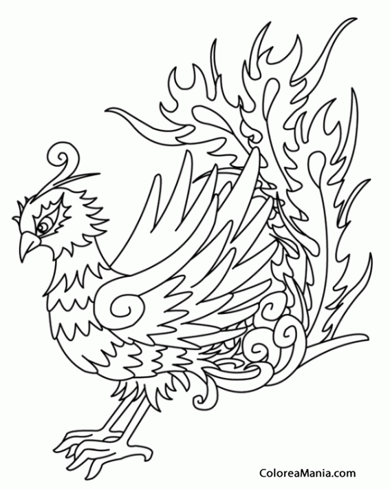 coloring pages of phoenix - photo#28