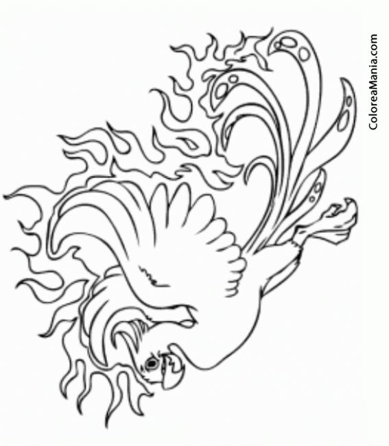 Colorear Ave Fénix 2 (Animales Fantásticos), dibujo para colorear gratis
