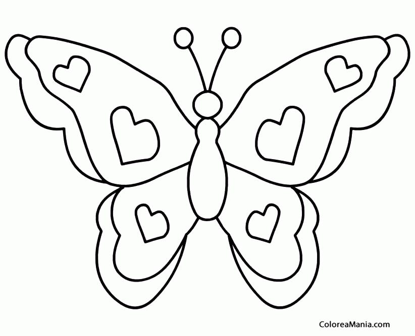 Colorear Mariposa Insectos Dibujo Para Colorear Gratis