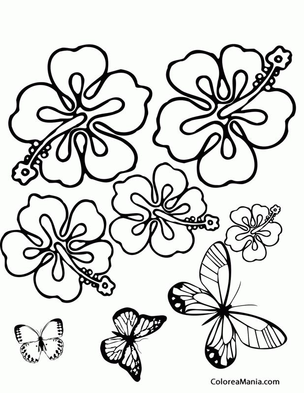 Colorear Mariposas volando (Insectos), dibujo para colorear gratis