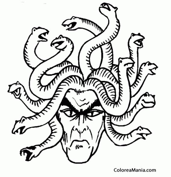 Excelente Medusas Para Colorear Patrón - Ideas Para Colorear ...
