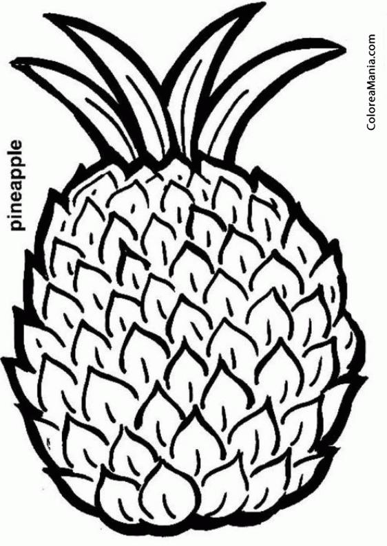 Colorear Piña Pineapple Frutas Dibujo Para Colorear Gratis
