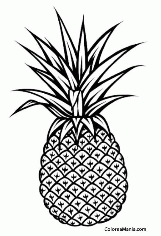 Colorear Piña Pinya Ananás Frutas Dibujo Para Colorear Gratis