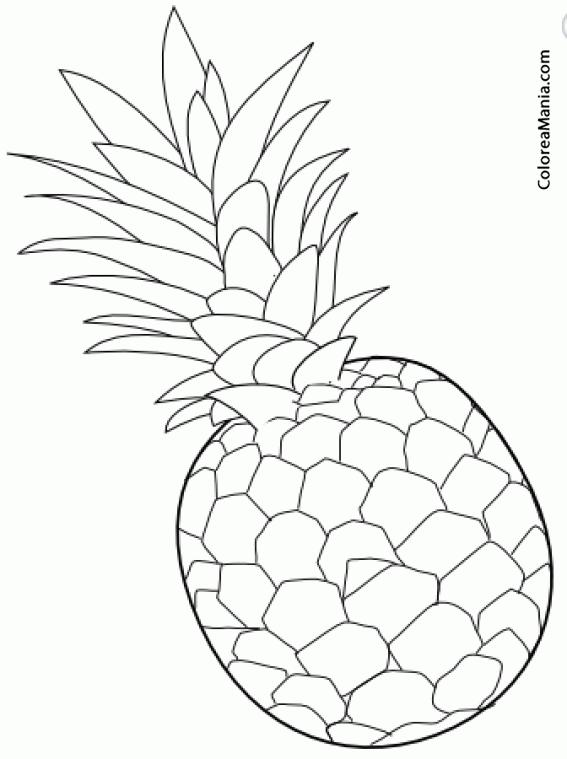 Colorear Pinya Piña Frutas Dibujo Para Colorear Gratis