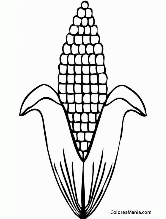 Colorear Maíz (Verduras), dibujo para colorear gratis