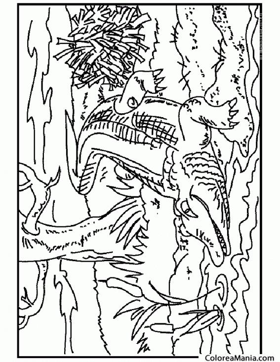 Colorear Cocodrilo en el río 2 (Reptiles), dibujo para colorear gratis