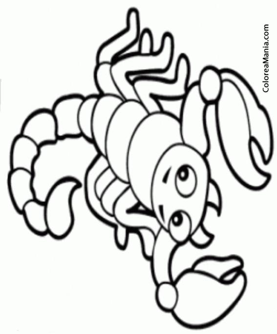 Colorear Escorpin Scorpion Scorpio Scorpione 6 Smbolos