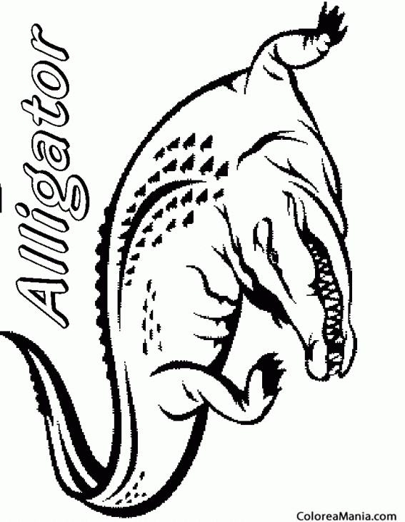 Colorear Alligator. Cocodrilo (Reptiles), dibujo para colorear gratis