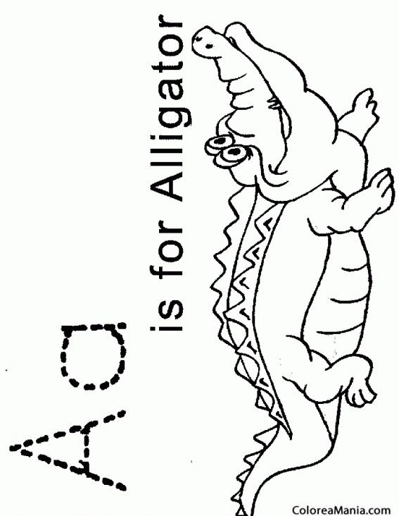 Colorear A de alligator. Cocodrilo (Reptiles), dibujo para colorear ...