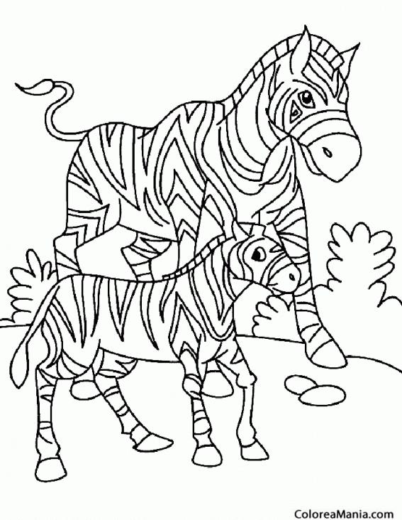 Dorable Página Para Colorear Zebra Foto - Ideas Para Colorear ...