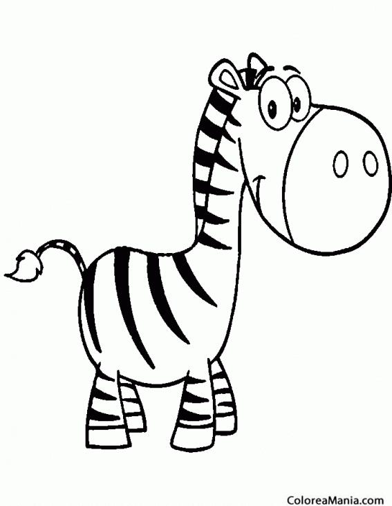 Colorear Cebra cabezona 2 (Animales de la Selva), dibujo para ...