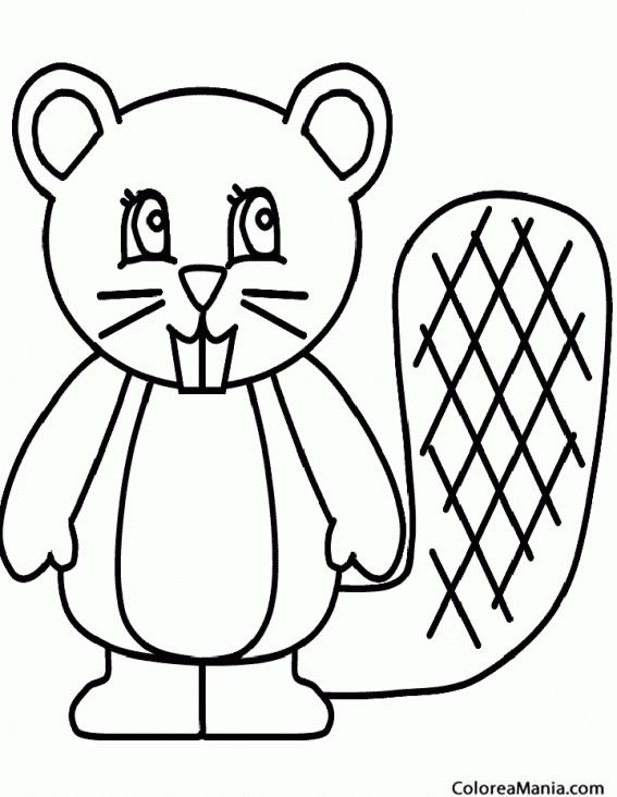 Colorear Castor cola ancha (Animales del Bosque), dibujo para ...