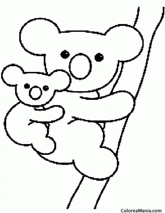Koala Para Colorear 1164 | LOADTVE