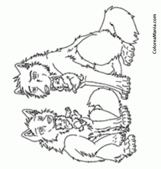 Colorear Dos Lobos con crías (Animales del Bosque), dibujo para ...