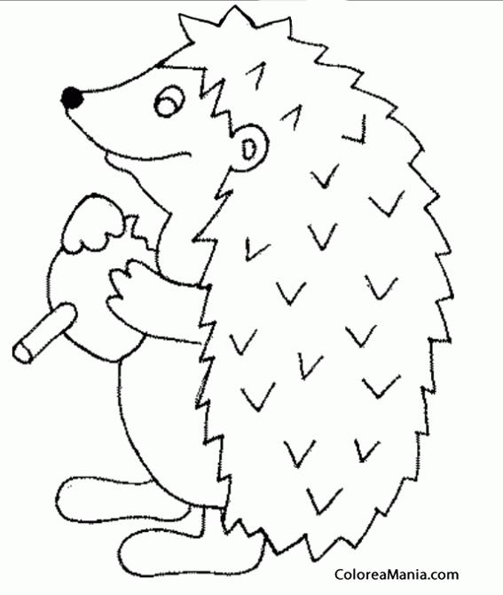 Colorear Erizo comiendo seta (Animales del Bosque), dibujo para ...