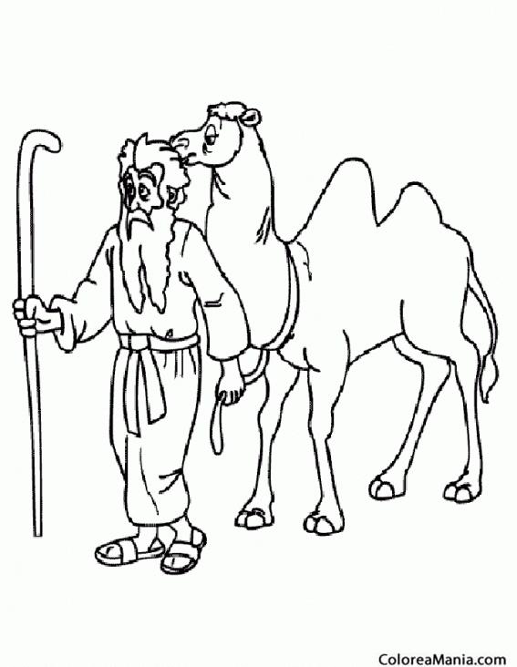 Colorear Camello y su pastor (Animales del Desierto), dibujo para ...