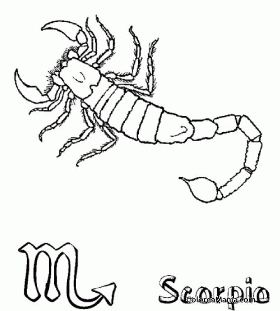 Colorear Escorpin Scorpion Scorpio Scorpione 14 Smbolos