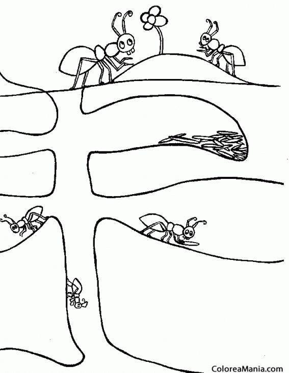 Colorear Hormigas en su hormiguero (Insectos), dibujo para colorear ...