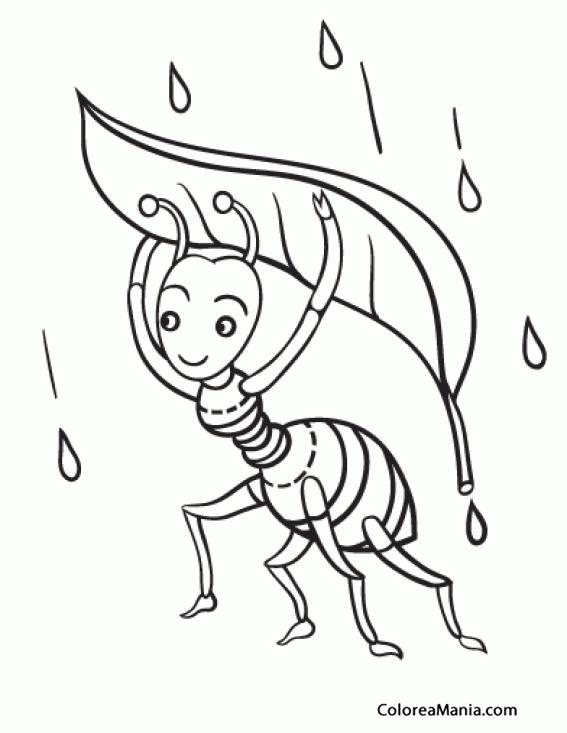 Colorear Hormiga bajo la lluvia (Insectos), dibujo para colorear gratis