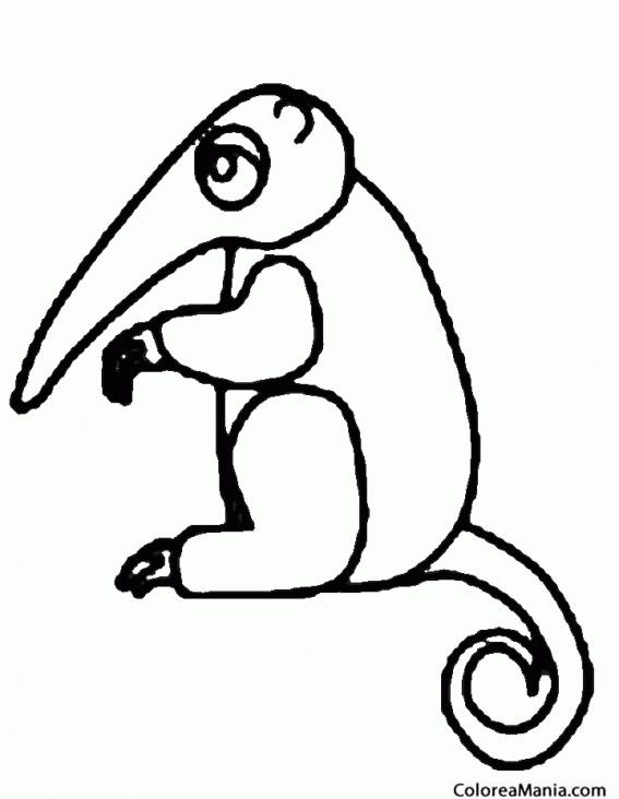 Colorear Oso Hormiguero Infantil Animales Del Bosque Dibujo Para