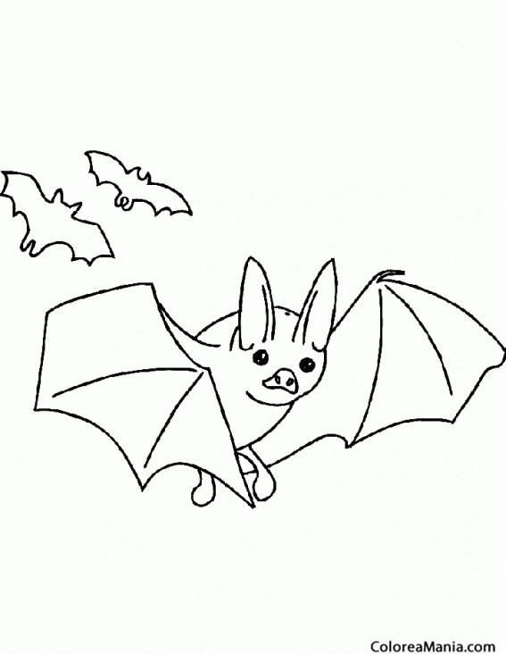 Colorear Murciélago. Bat (Animales del Bosque), dibujo para colorear ...