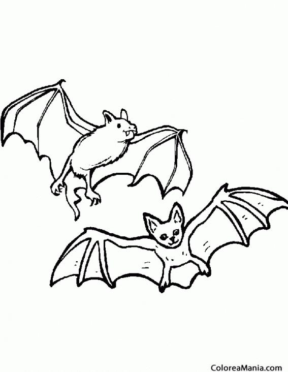 Colorear Dos Murciélagos volando (Animales del Bosque), dibujo para ...