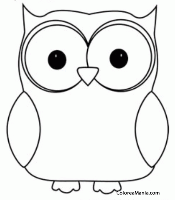 Owl Coloring Pages Pinterest