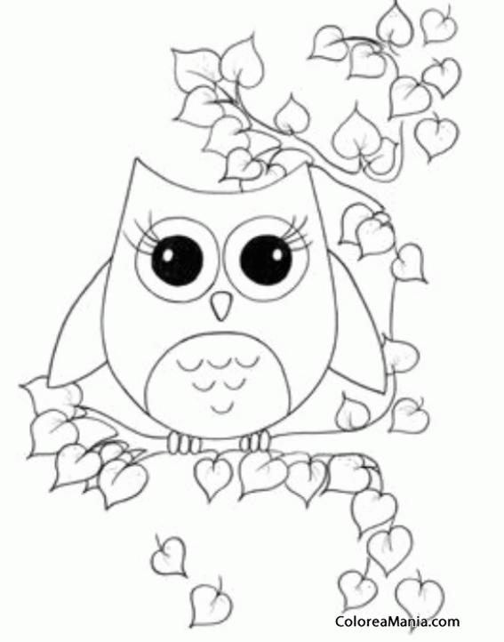 Colorear Búho rodeado de hojas (Aves), dibujo para colorear gratis