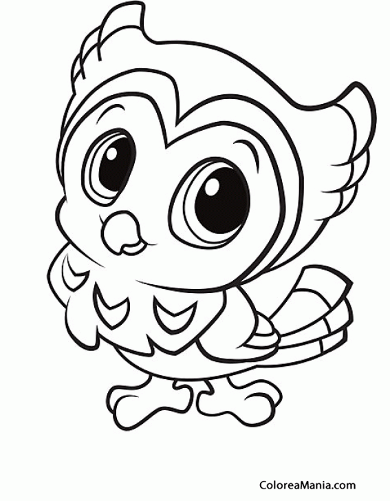 colorear b u00faho infantil  aves   dibujo para colorear gratis infant clipart png infant clip art black and white
