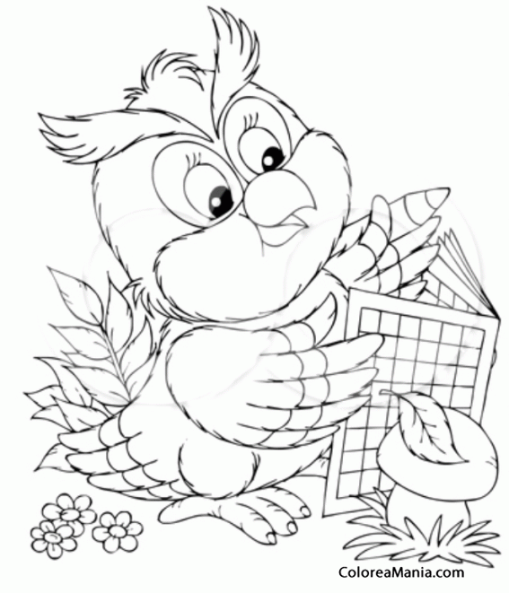 Colorear Búho leyendo un cómic (Aves), dibujo para colorear gratis