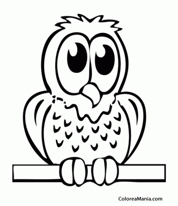 Colorear Búho con grandes ojos negros (Aves), dibujo para colorear ...