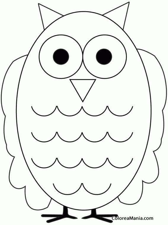 Colorear Búho alas grandes (Aves), dibujo para colorear gratis