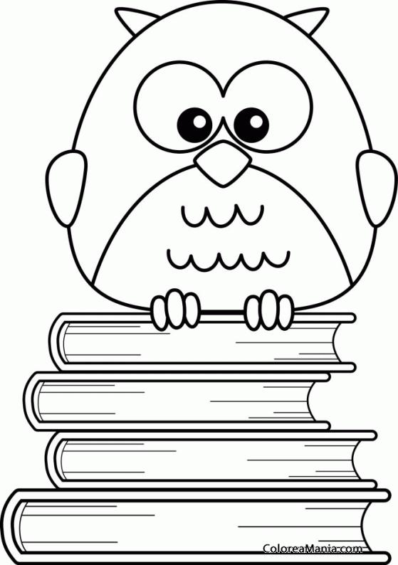 Colorear Búho sobre libros (Aves), dibujo para colorear gratis