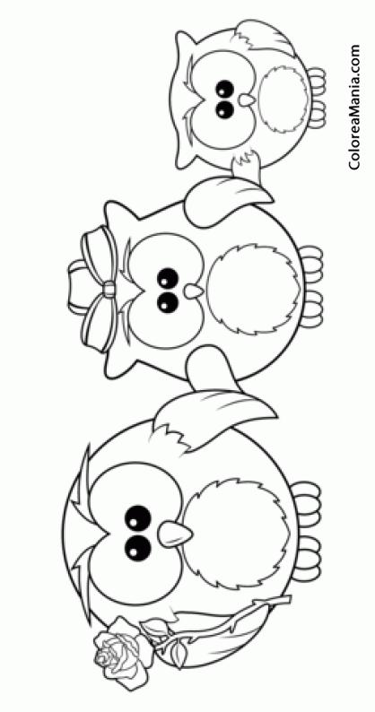 Colorear Familia Bhos (Aves), dibujo para colorear gratis
