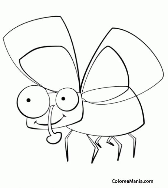 Colorear Mosca de ojos grandes (Insectos), dibujo para colorear gratis
