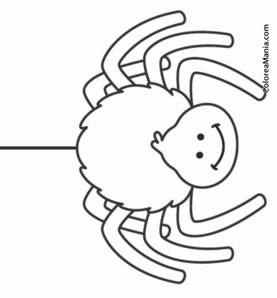 Colorear Araña Feliz Colgando Insectos Dibujo Para
