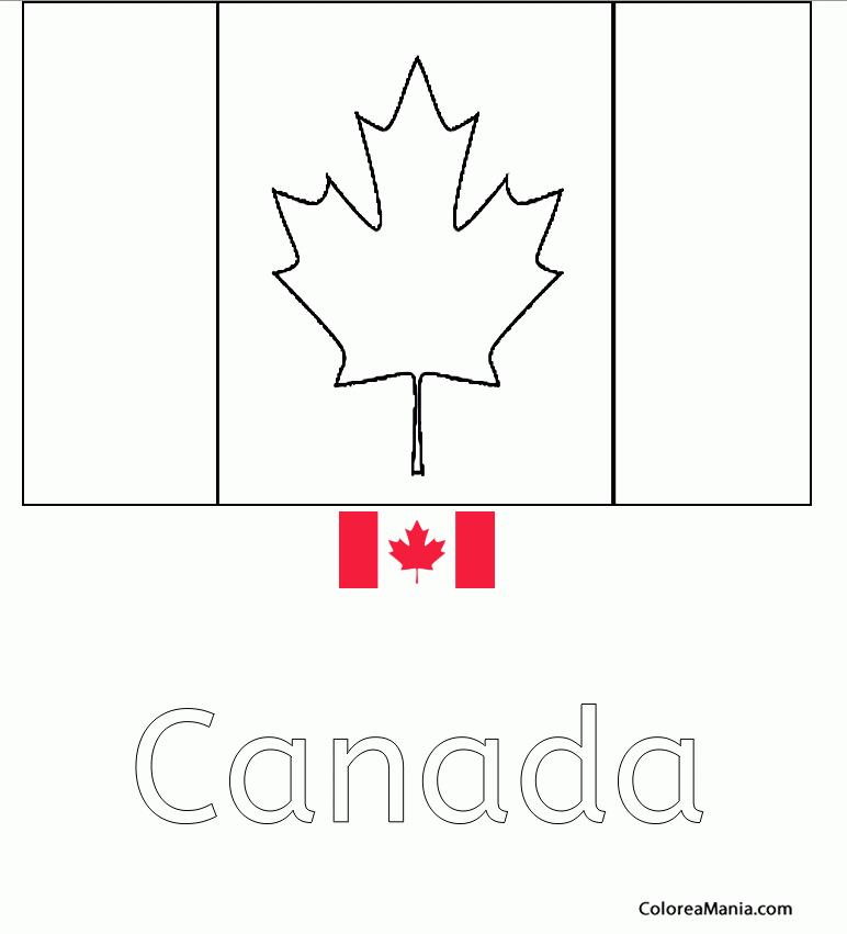 Colorear Canada Canadá Banderas De Paises Dibujo Para