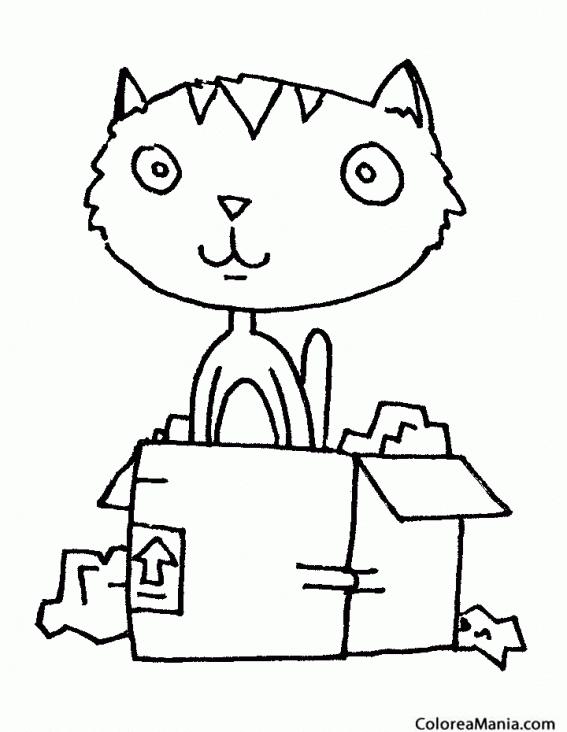 Colorear Gato en una caja (Animales Domésticos), dibujo para ...