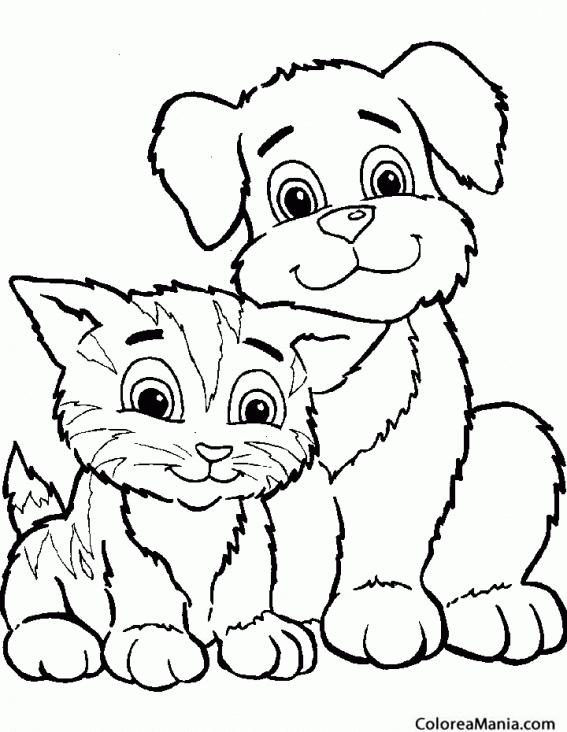 Colorear Gatito y perrito sentados juntos (Animales Domésticos ...