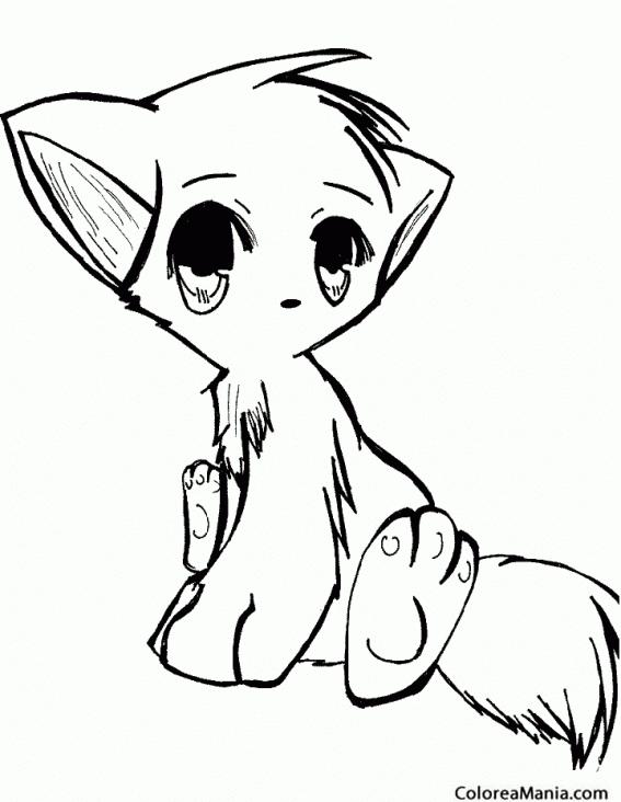 Colorear Gato anime Animales Domsticos dibujo para colorear gratis